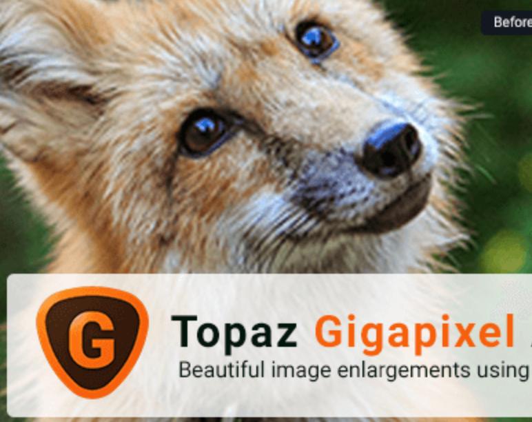 AI人工智能图片放大 Topaz Gigapixel AI v5.1.4中文汉化版