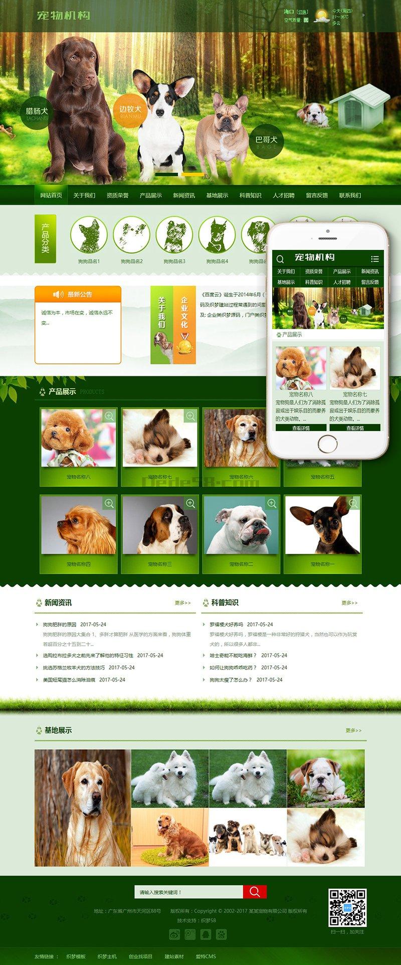 绿色宠物狗机构类网站<a href='http://www.xunsan.com' target='_blank'><u>织梦模板</u></a>(带手机端)